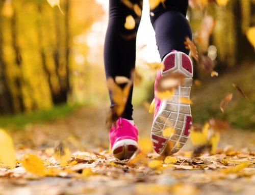 Le drainage d'automne-la cure détox